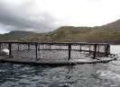 Cage flottante