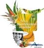 Visuel ODEADOM des Filières Végétales de diversification